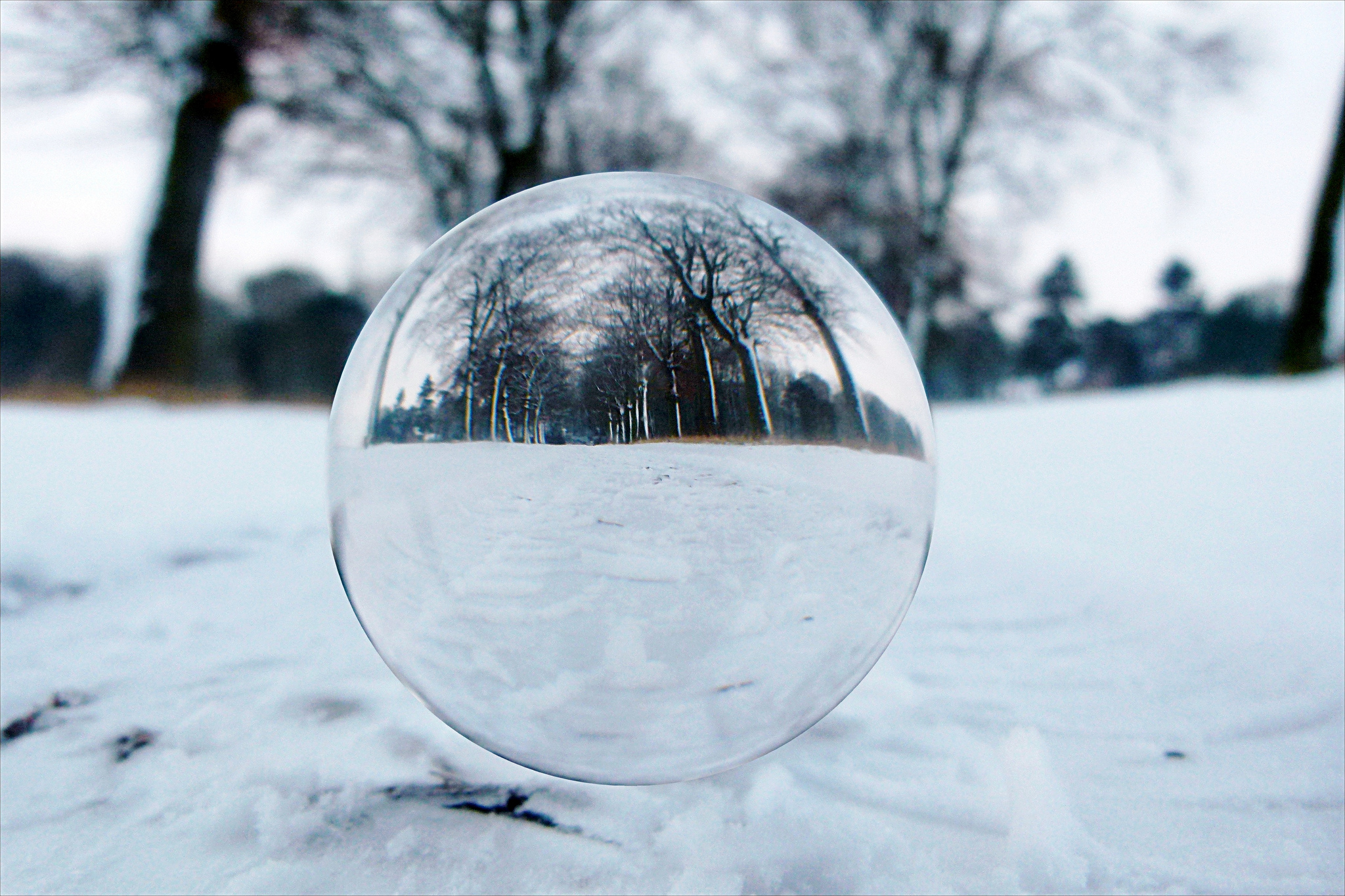 Photo, winter crystal ball